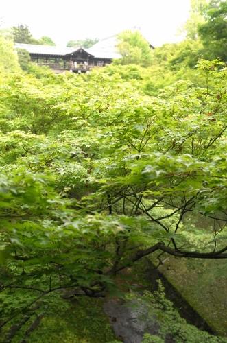 201505京都3