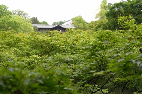 201505京都4