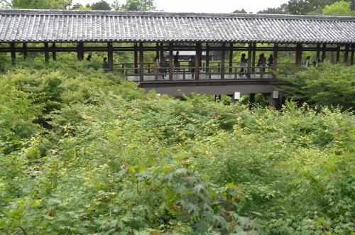 201505京都11
