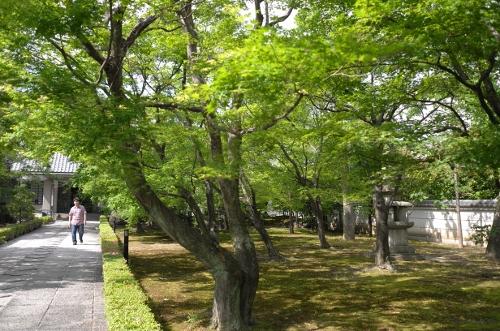 201505京都49