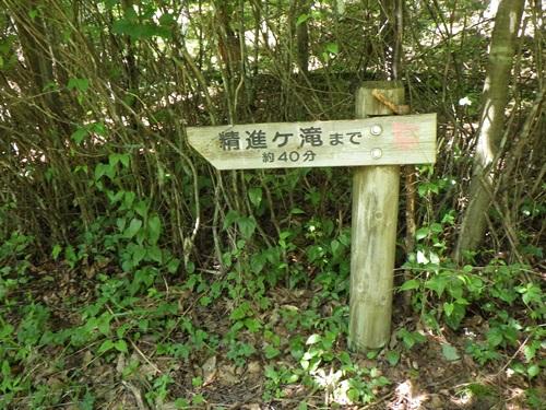 精進ヶ滝2