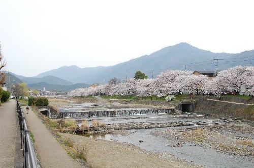 春哲学2014-9