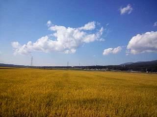 20141009福島(その8)