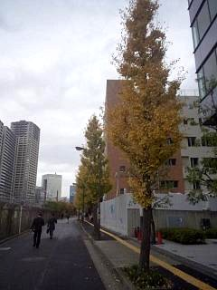 20141129スポーツセンター(その1)