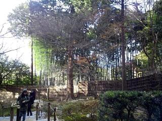 20141227銀閣寺(その35)