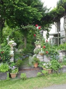 多可ガーデン-4