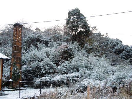雪の朝2(2014-12-17)