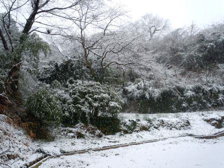 雪の元旦1