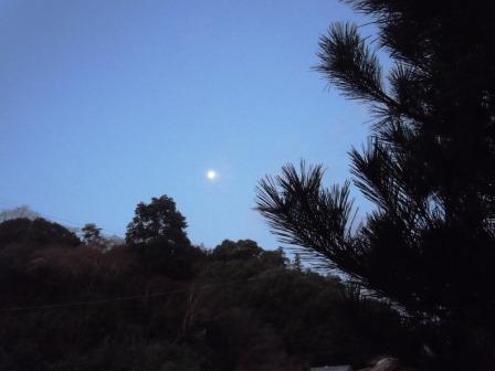 有明の月(1月)2