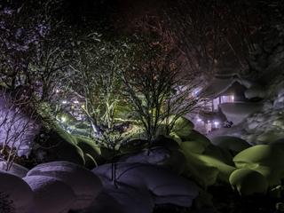 深夜橋から (1 - 1DSC_0054)_R
