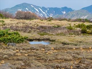 2015-5-18 那須岳29 (1 - 1DSC_0043)_R