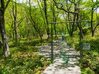 2015-5-30赤城山縦走52 (1 - 1DSC_0063)_R