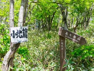2015-5-30赤城山縦走58 (1 - 1DSC_0073)_R