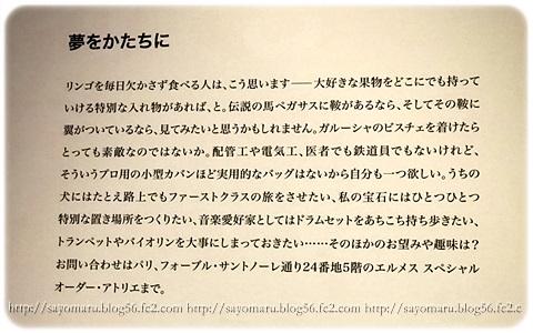 sayomaru11-733.jpg
