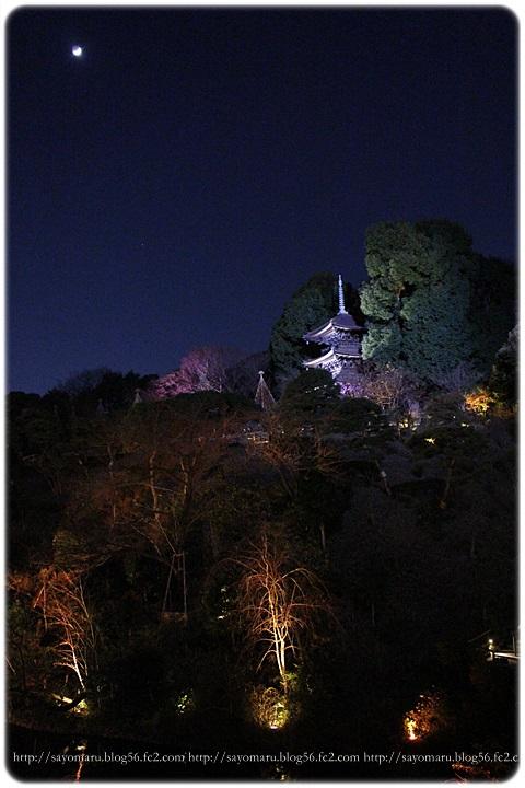 sayomaru11-806.jpg