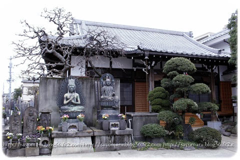 sayomaru11-897.jpg
