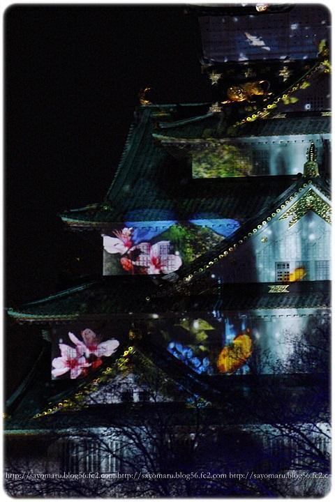 sayomaru11-954.jpg