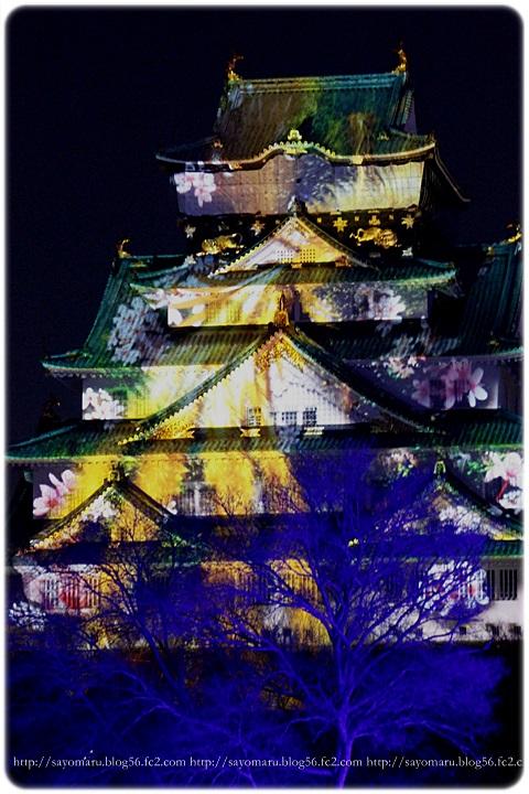 sayomaru11-955.jpg