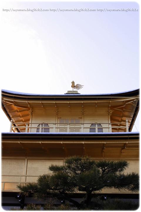 sayomaru12-30.jpg