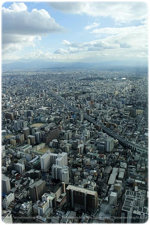 sayomaru12-320.jpg