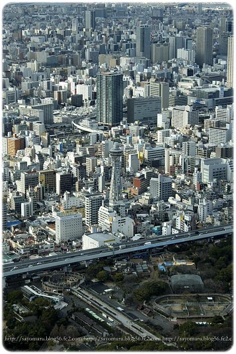 sayomaru12-322.jpg