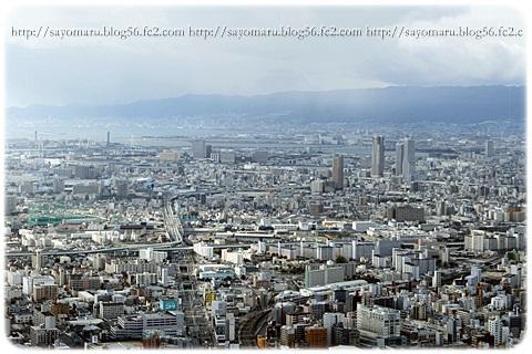 sayomaru12-328.jpg