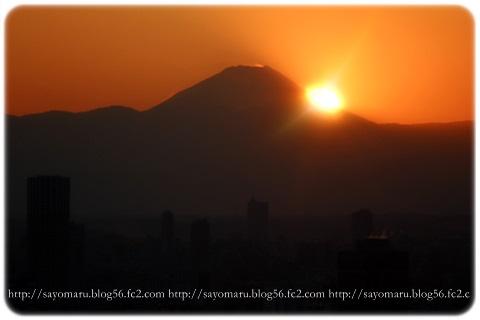 sayomaru12-391.jpg