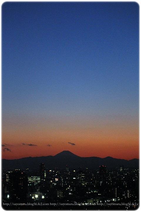sayomaru12-394.jpg