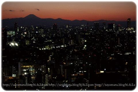 sayomaru12-395.jpg