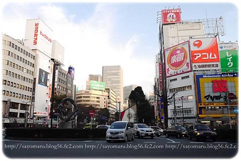 sayomaru12-484.jpg