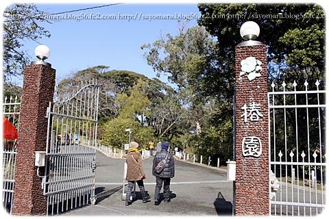 sayomaru12-667.jpg