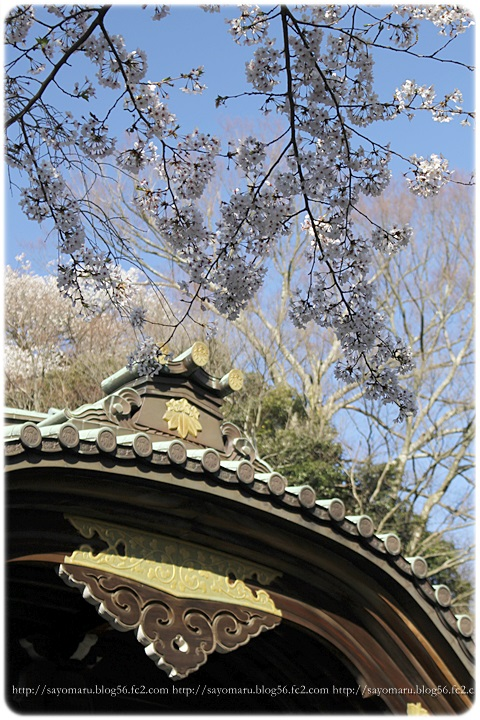 sayomaru12-999.jpg