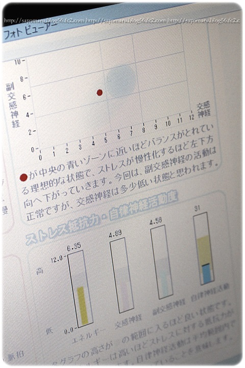 sayomaru13-224.jpg