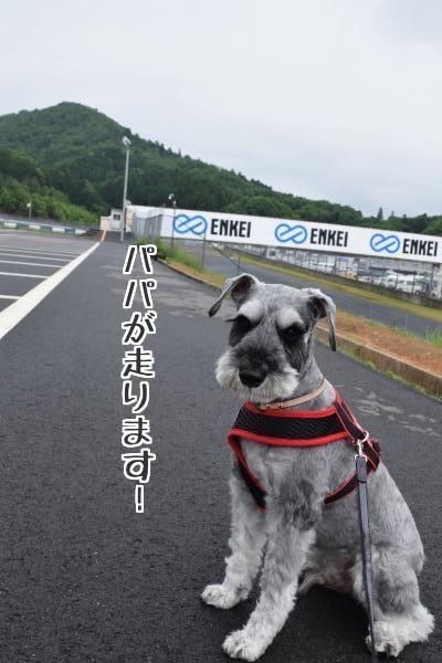 DSC_0214_20150516_con_text2.jpg