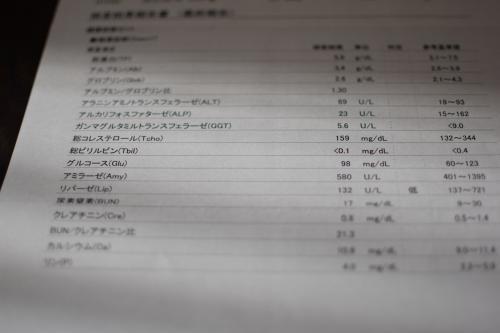 DSC_0370_20150510_con.jpg