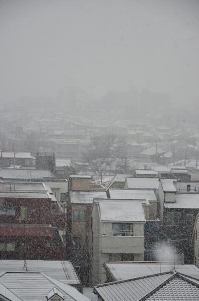 ベランダからの雪景色20150130