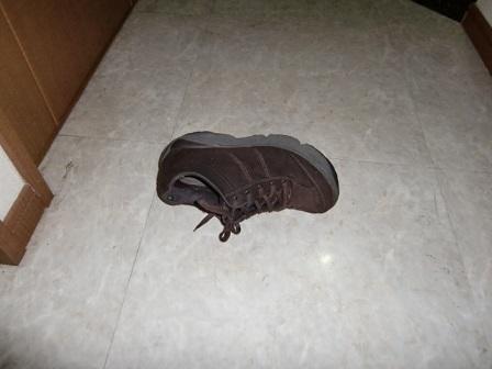 ギャ~!ママの靴が!