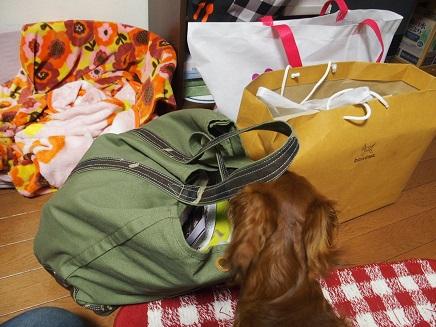 3袋のお買い物&パンフレット