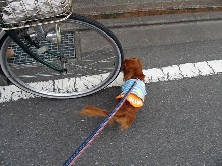 自転車パンクでしゅ