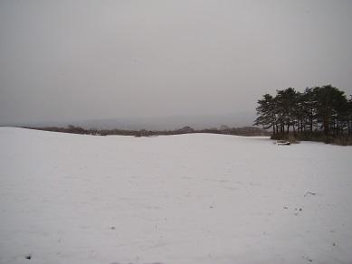 牧草地雪景色