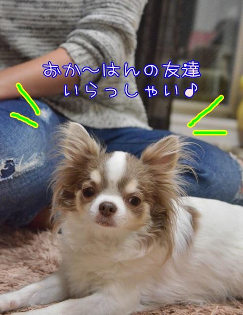 DSC_9725.jpg