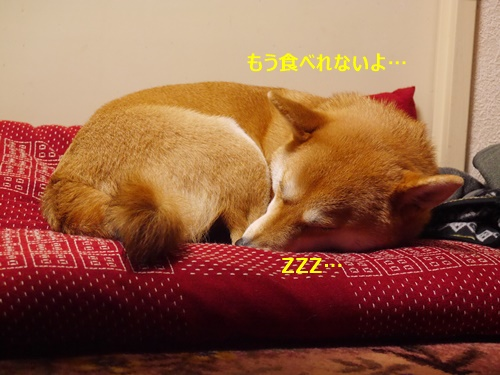 9おやすみなさい
