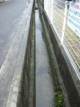 水路掃除0406
