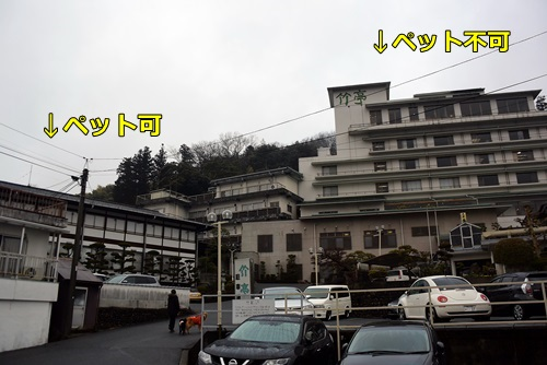DSC_2470.jpg