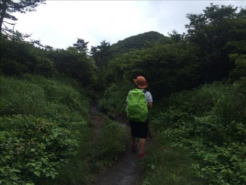坊がつる 登山道