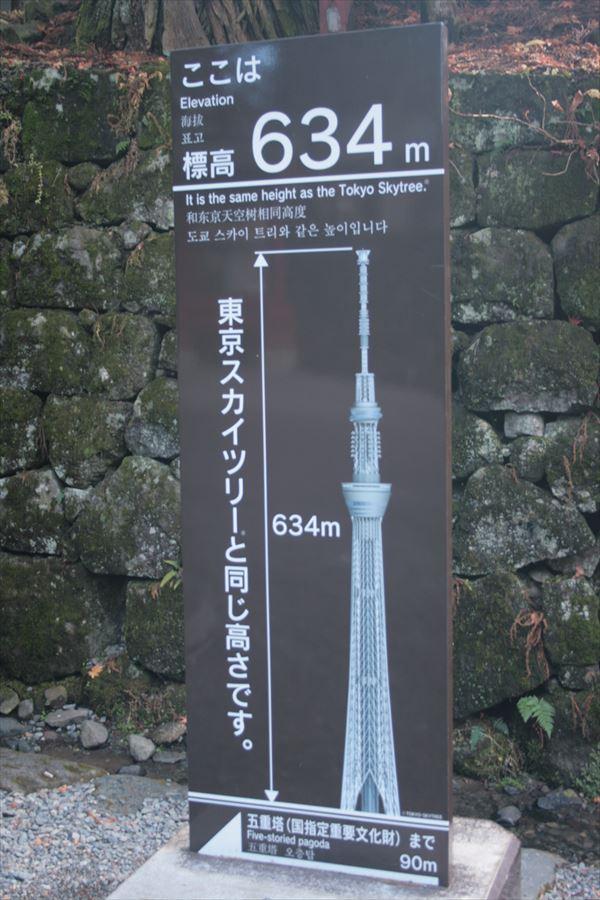 1128 栃木005