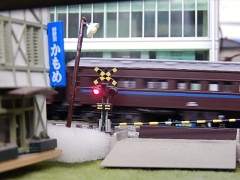 DSCN4601.jpg