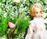 idoll15s-29.jpg