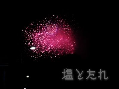 IMG_0532_20150725_03_隅田川花火大会