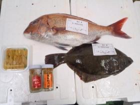 17鮮魚セット2015623